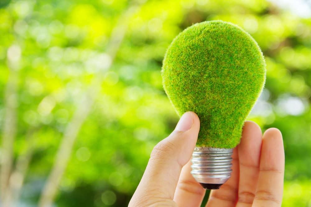 ampoule recouverte de gazon vert dans une main