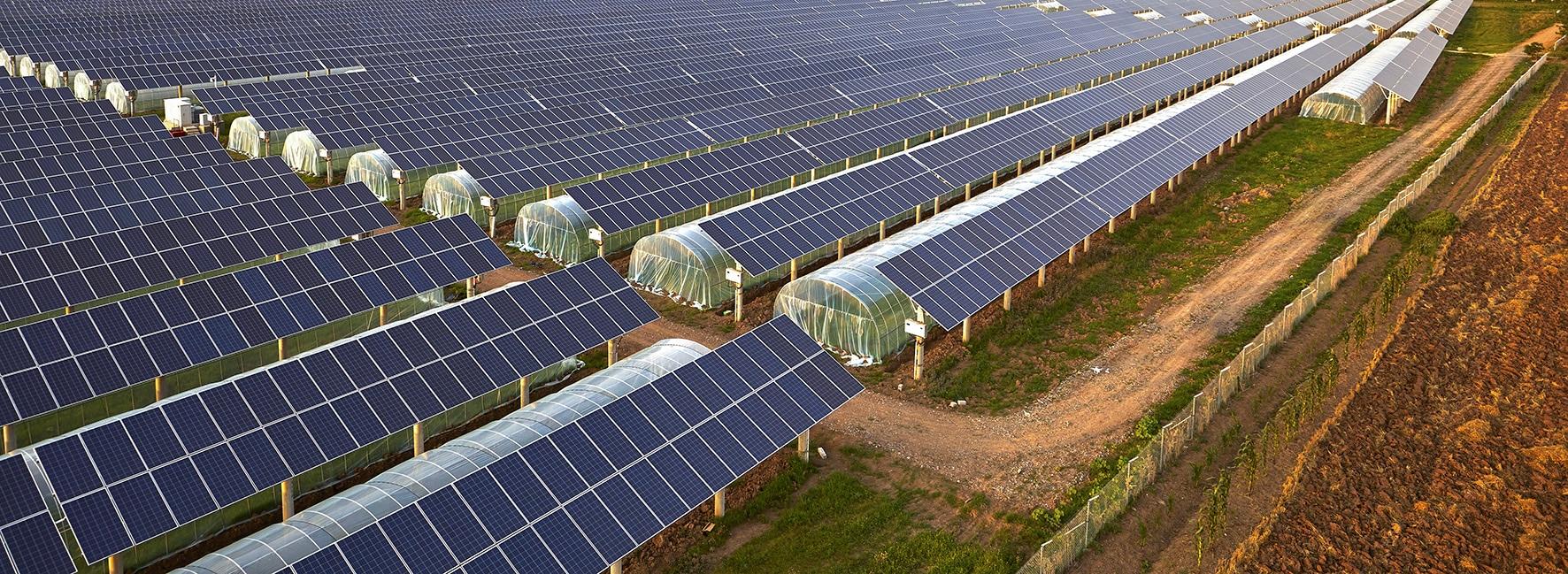 photovoltaique conteste reforme contrats