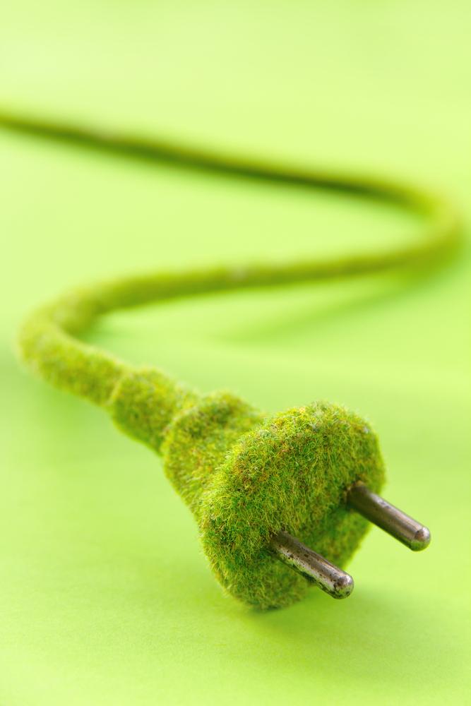 prise electricite revouverte gazon vert