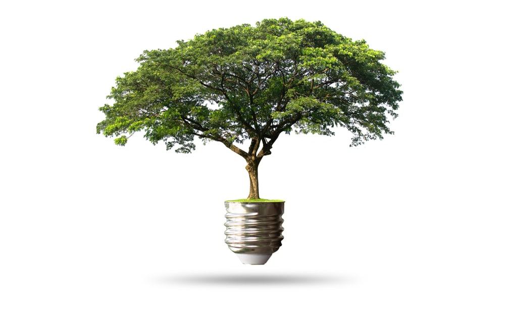 report présentation loi énergie et climat