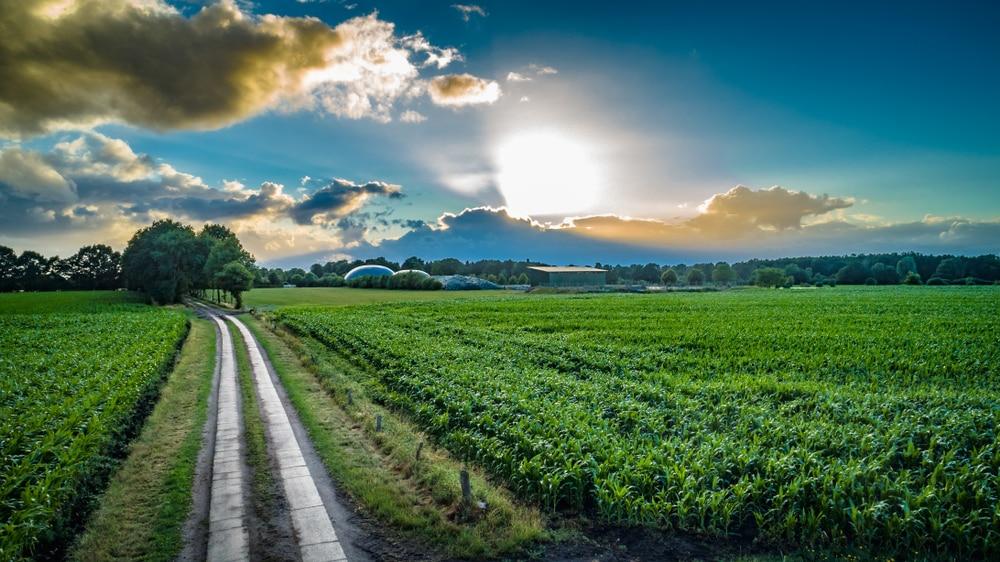 Nature energy, un acteur incontournable du biogaz devient fournisseur de gaz pour les entreprises françaises