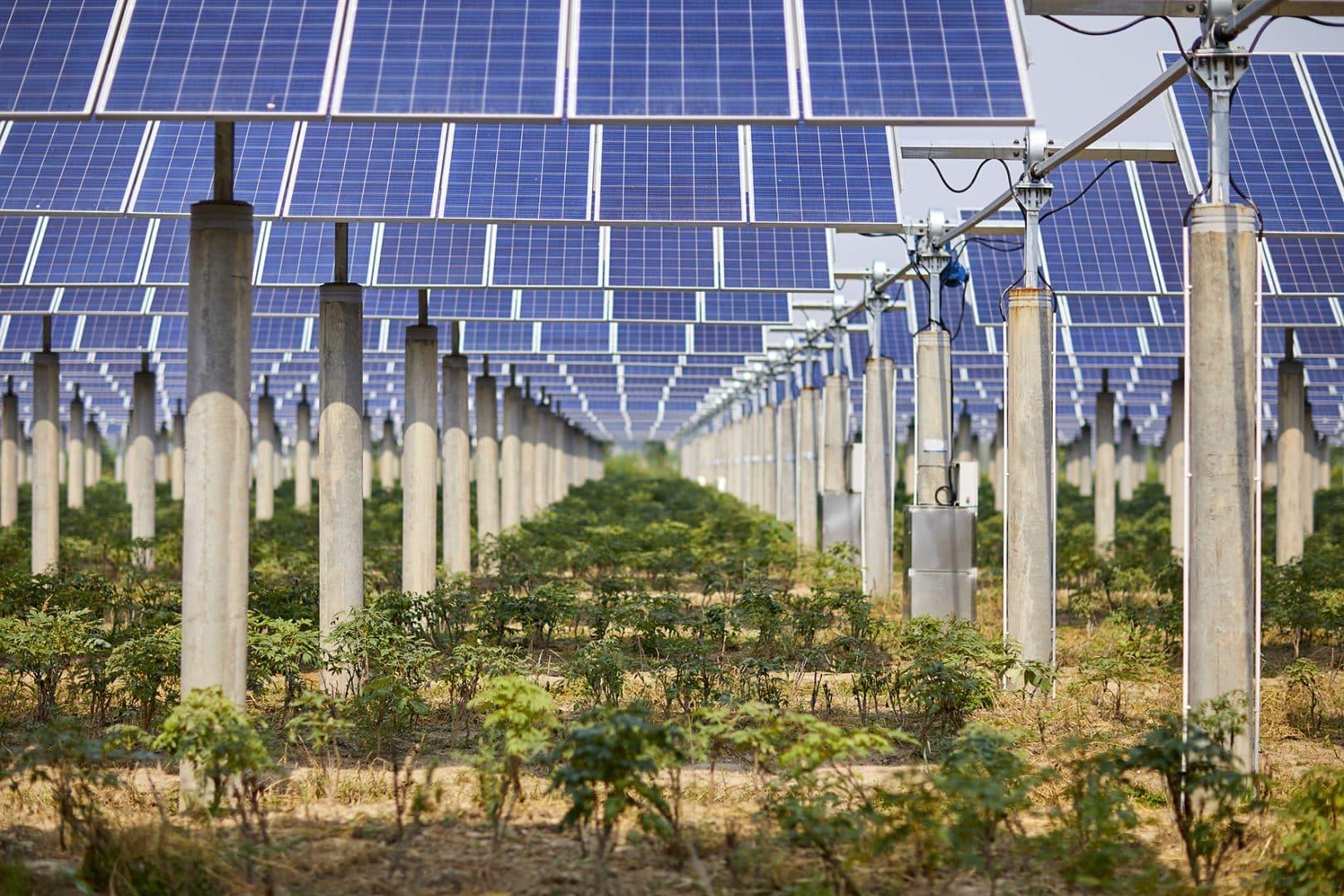 appels-d'offre-photovoltaique-juin-2020ique
