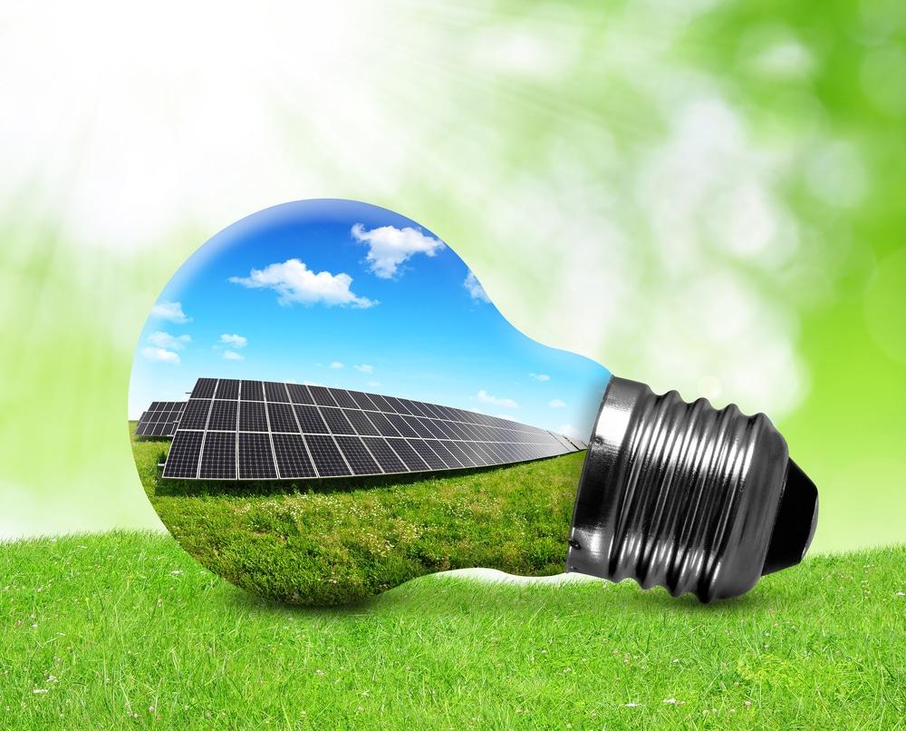 stratégie bas carbone révisée